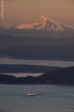 A lone ferry crosses in front of Mt. Baker